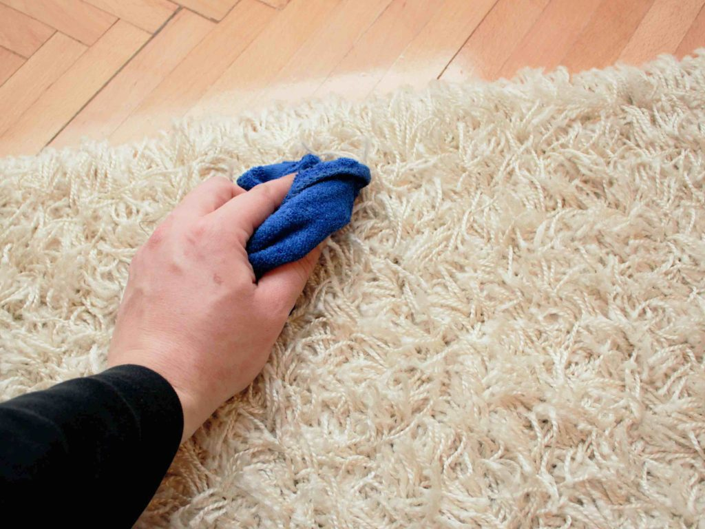 blotting-rug-stains-orange-county-rug-cleaners